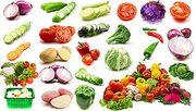 Оптовые продажи овощей Алматы